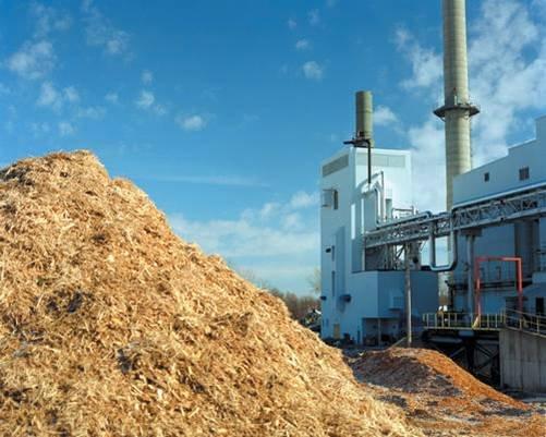 Wood chip biomass for fuel destination